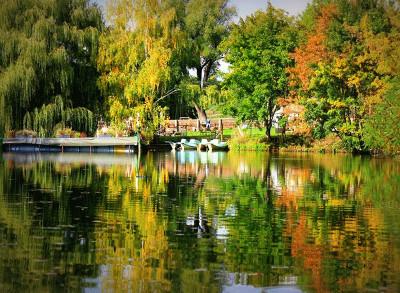 Herbstlicher Blick über den Teich mit unseren großartigen Tretbooten …