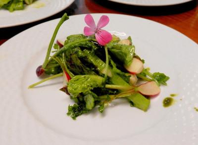 Was unsere Küche/Köche so fabriziert/en … immer viel Salate und Gemüse!
